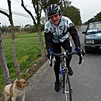 (Click for larger image) Bernard Sulzberger cops a bit of attitude from a local dog in China